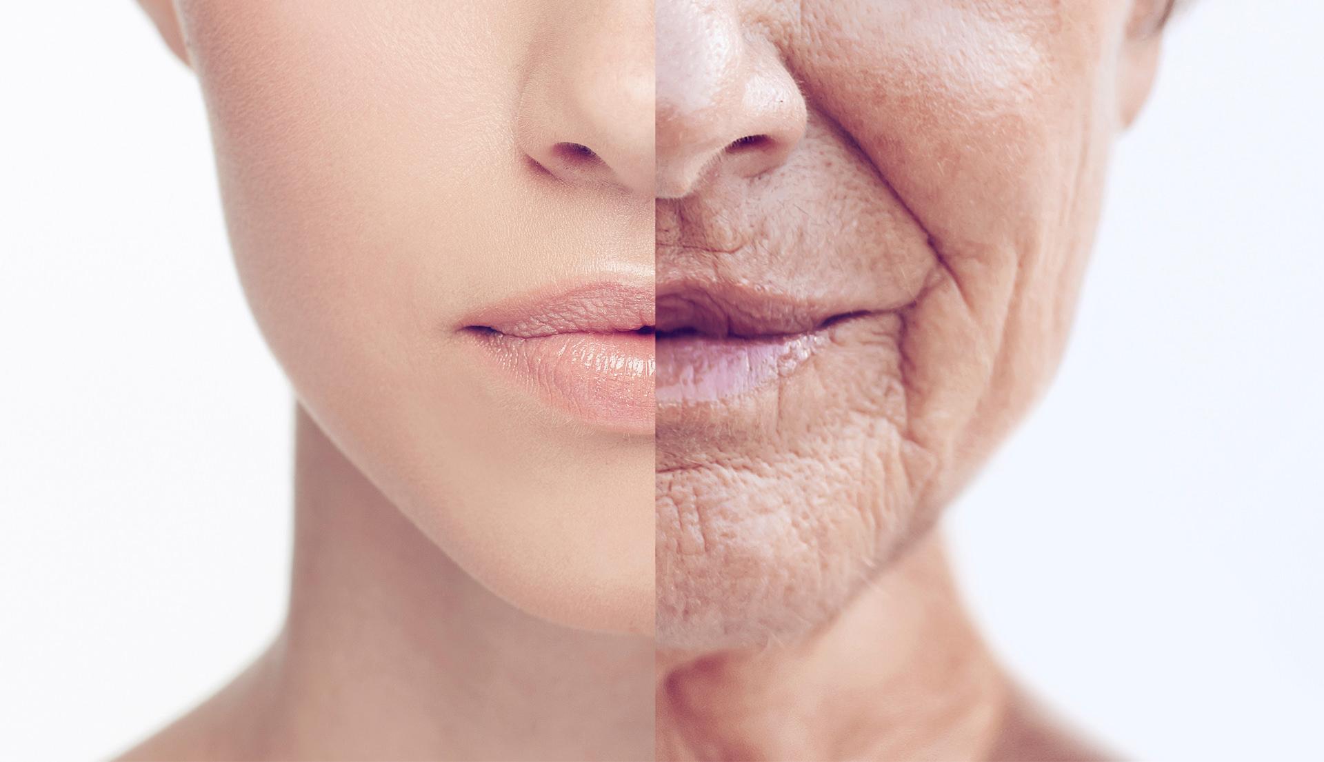Yến sào bí quyết trong việc chống lão hóa ở người lớn tuổi – Yến Sào An Toàn